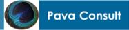 pava consult, organisatieadvies, interim-management